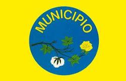 Bandeira do Município de São Mamede