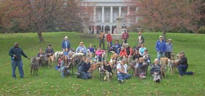 Gallivant with the Greyhounds Group Shot 2012