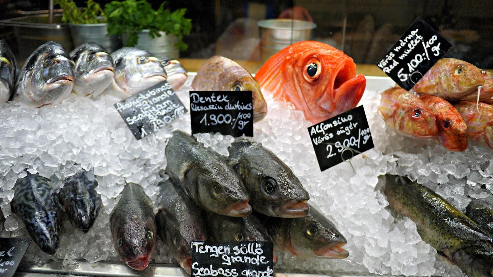 Bigfish seafood restaurant budapest