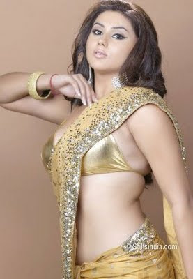 Hot-Namitha-Saree-In-Photos