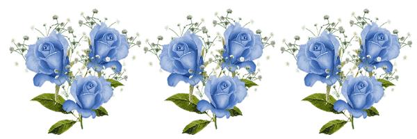 rosas azules para imprimir