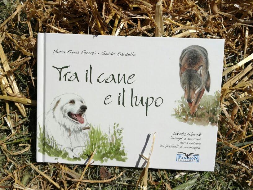 Sketchbook Tra il cane e il Lupo