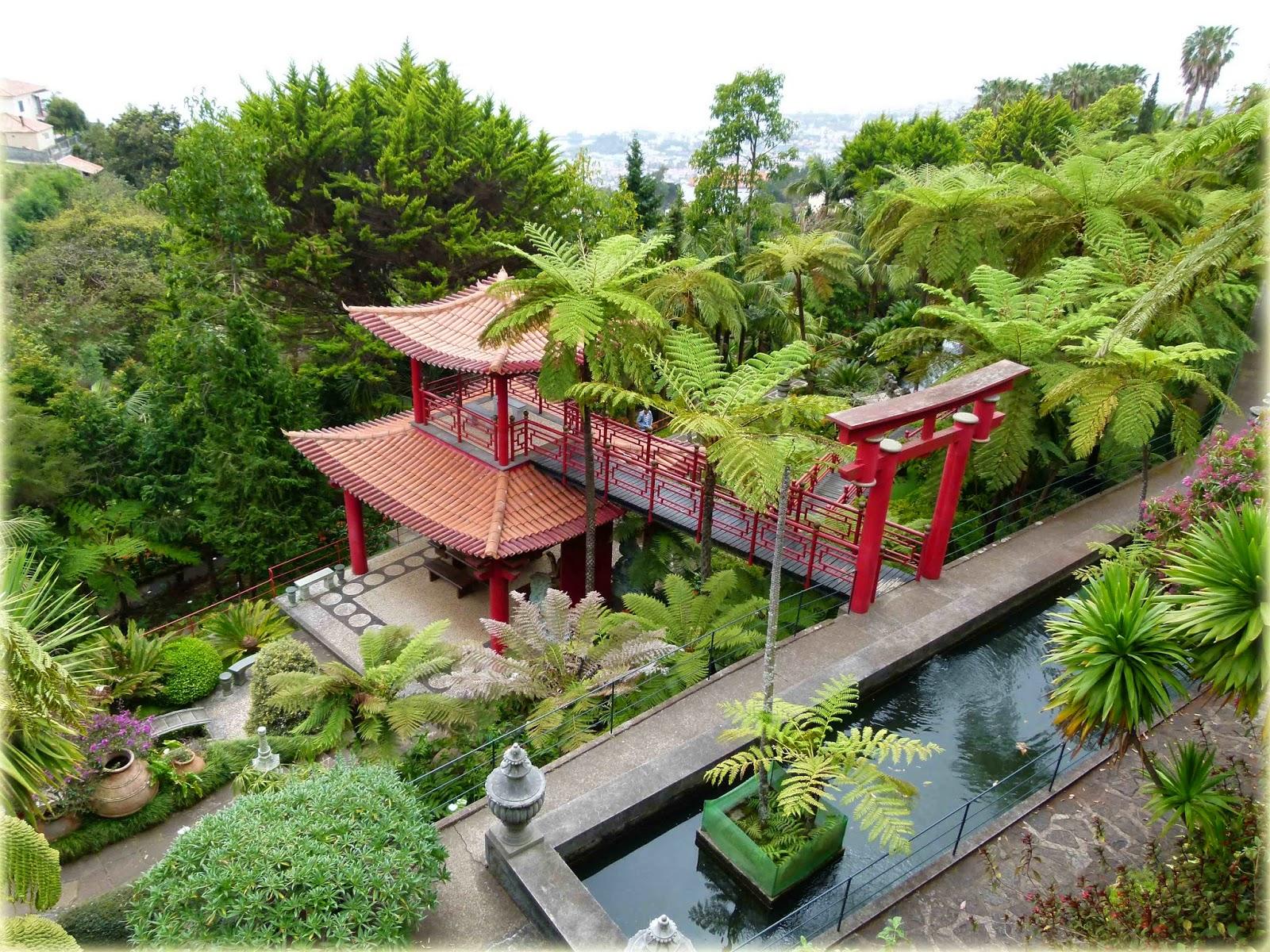 Viajar s no jardim tropical do monte palace for 5 jardins de lucie