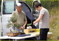 Bonsai Tree Buy! :Orlando Bloom