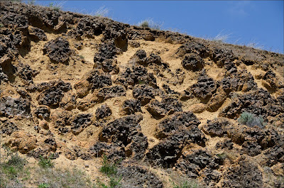 Columbia River Basalt Group pillow basalt.