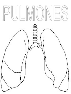 Hipertensión pulmonar e derrame pleural