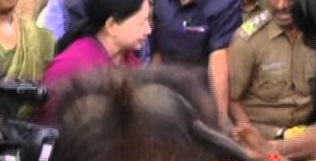 Tamil Nadu Chief Minister J Jayalalitha's Narrow escape from an Elephant attack