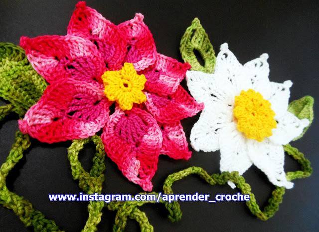 flores em croche dvd aprendercroche cursodecroche com edinir-croche frete gratis