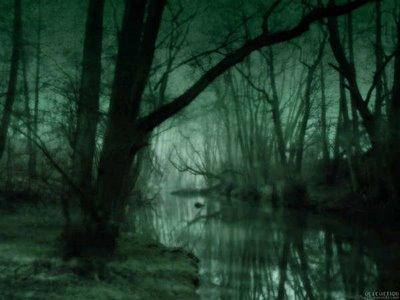 Bosque Vidus (Pantanos) El%2BPantano