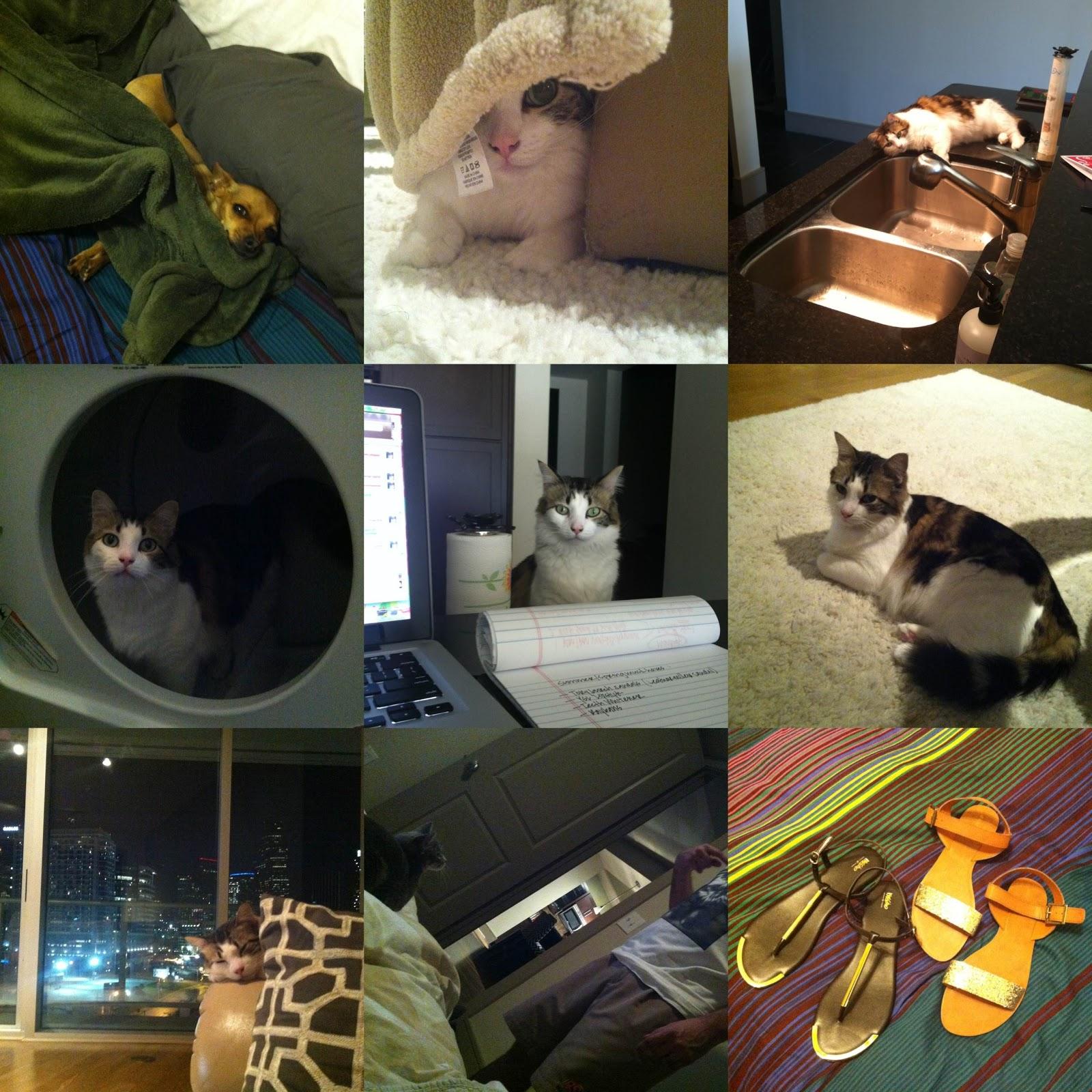http://4.bp.blogspot.com/-M5hzMLFQ0kE/UUaXiOp_ahI/AAAAAAAAMRE/64HrRzugMs0/s1600/photo.jpg