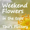 WEEKEND FLOWERS IN THE TOPS