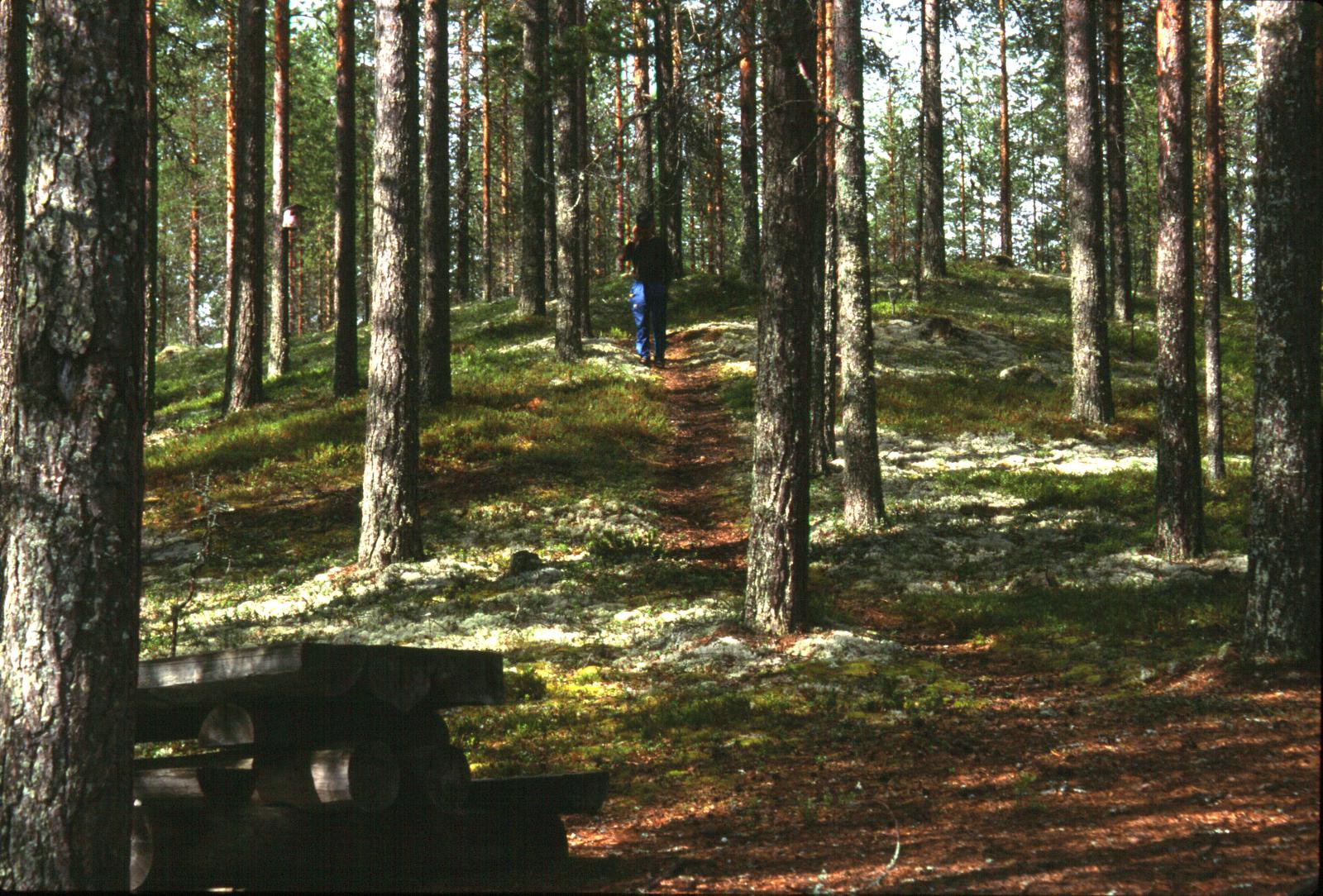 Karhunpolku-2003-07