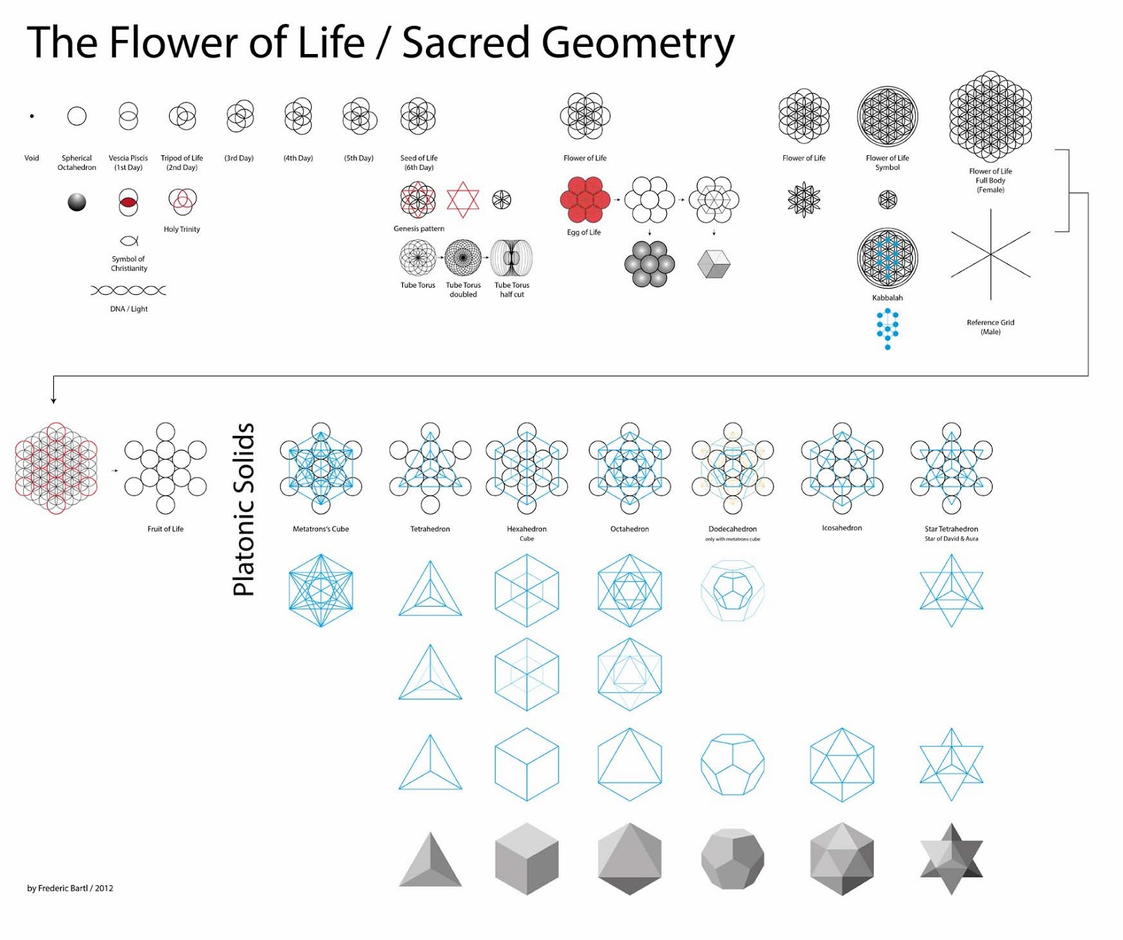 The Monkey Buddha Sacred Geometry & The Flower of Life