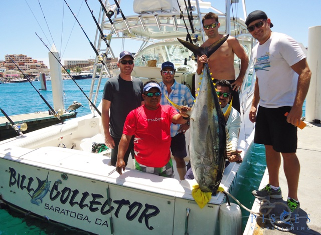 Cabo san lucas fishing report aug 15 21 2015 for Cabo san lucas fishing report