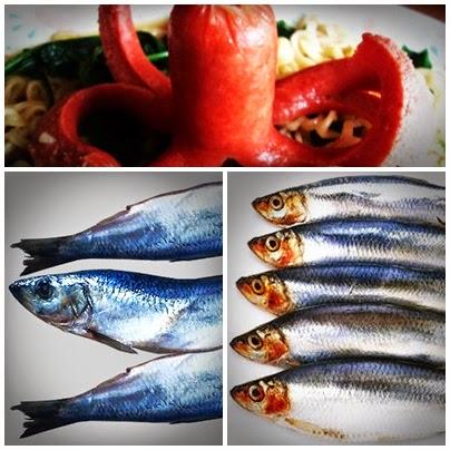 fish, kote, titus, octopus
