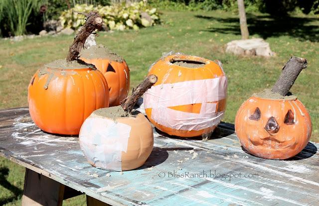 IMG_7930 Rit dye cement pumpkins