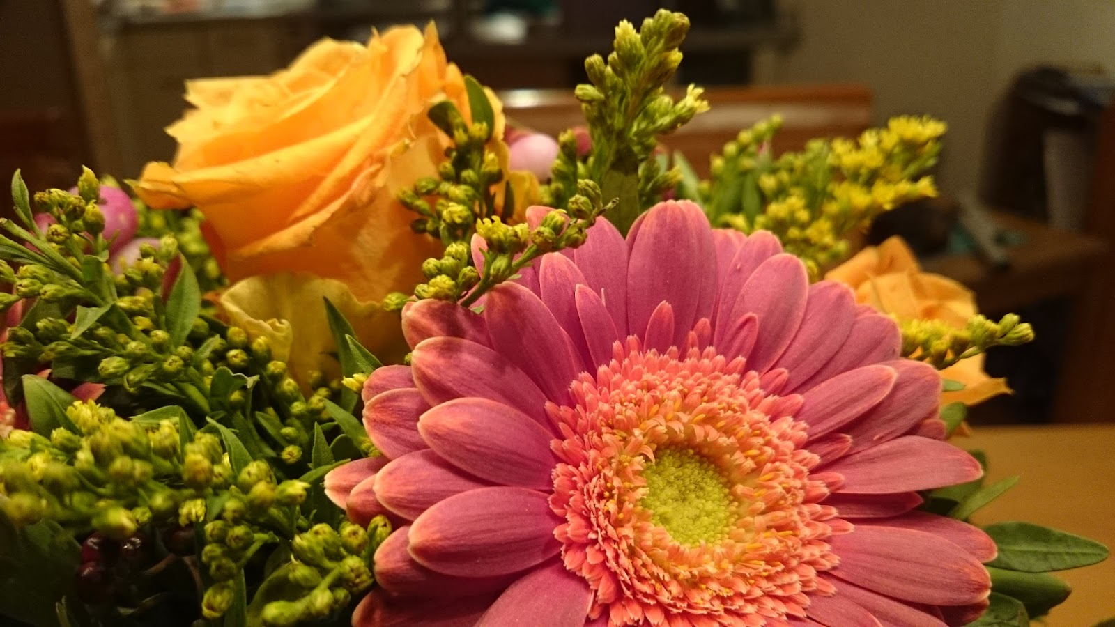 Wo Kann Ich Blumen Kaufen walking about rainbows türchen 7 über blumen und wo sie