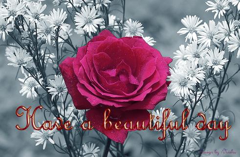 Love Greetings Creative Arts Emotional Greetings Good Morning