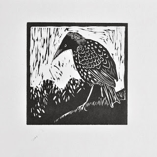 Starling bird linocut