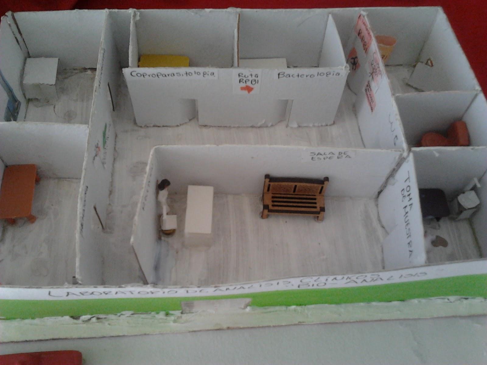 practicas de laboratorio tomas de muestras biologicas