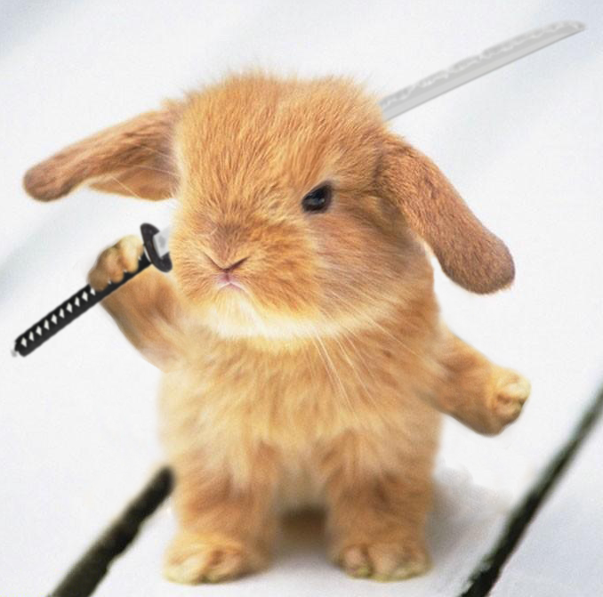 Warrior_Rabbit_by_Zakfuego.png