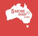 5moresheep