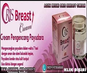 http://www.rikagusrini.com/2013/12/oris-breast-cream.html