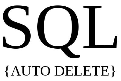 auto delete record yang sama