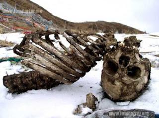 5 Besar Adat Pemakaman Unik Dunia