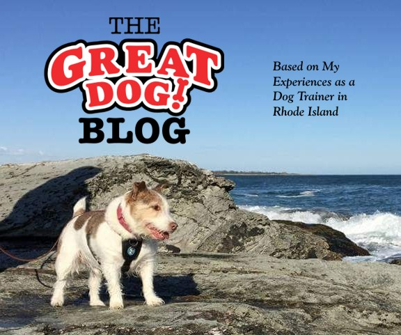 The Great Dog Blog