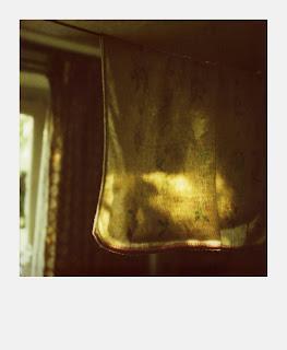 Polaroid SX70 - Torchon