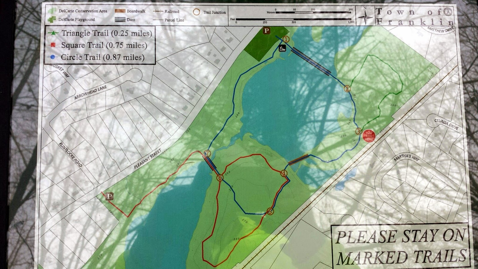 full trail map (with unavoidable glare and shadows)