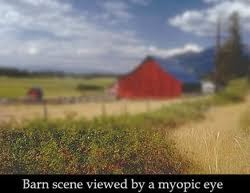 Myopia is a sign of intelligence