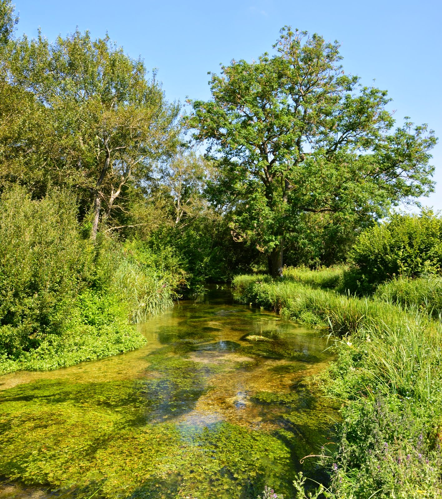 River Dever