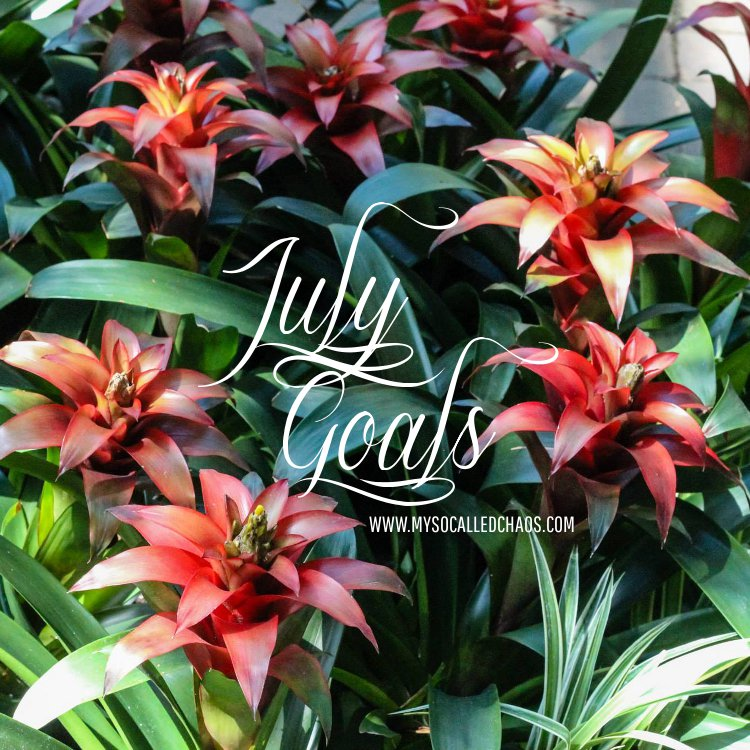 Monthly Goals Link-Up: July