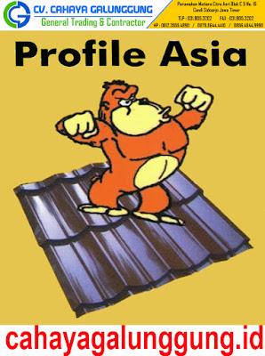 Genteng Metal Profile Asia