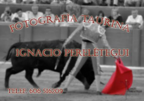 FOTOGRAFIA TAURINA