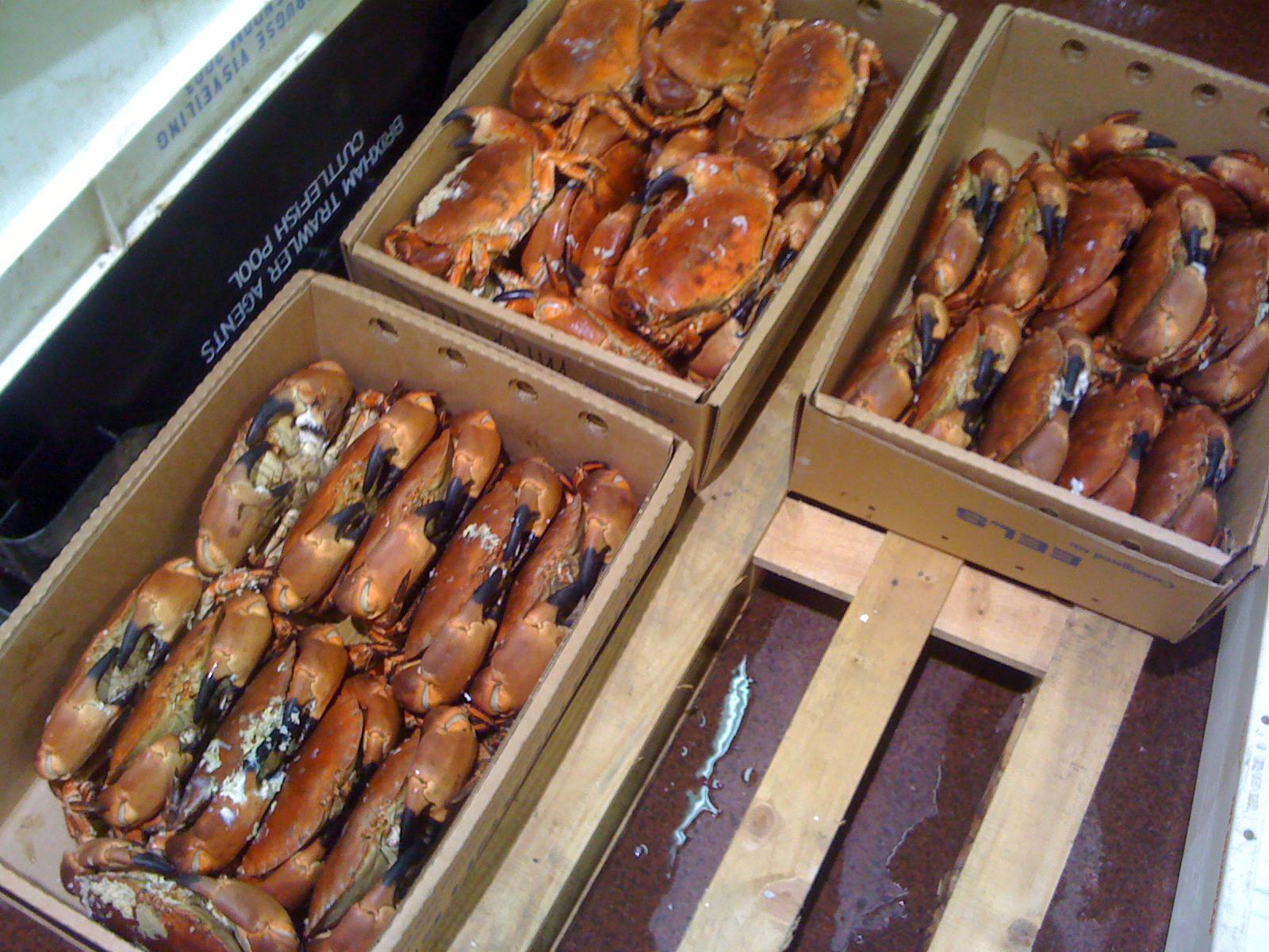 Wai vi ki billingsgate fish market for Fish market hours