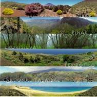 Regiones Naturales