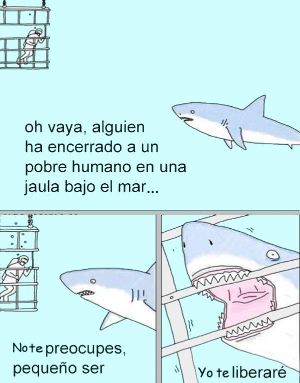 Tiburon ayuda a hombre buzo bajo el agua humor humor grafico