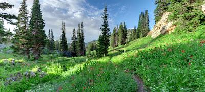 Paisajes del Edén perdido - Paradise landscapes