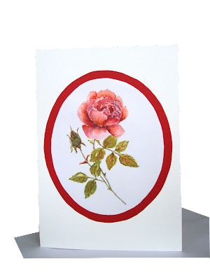 rose,single,love,design,handmade,card,flower,pink,red