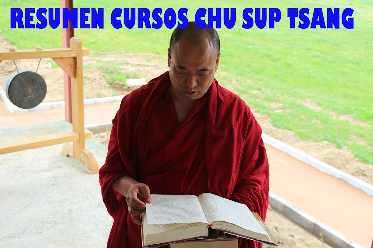 RESUMEN CURSOS CHU SUP TSANG