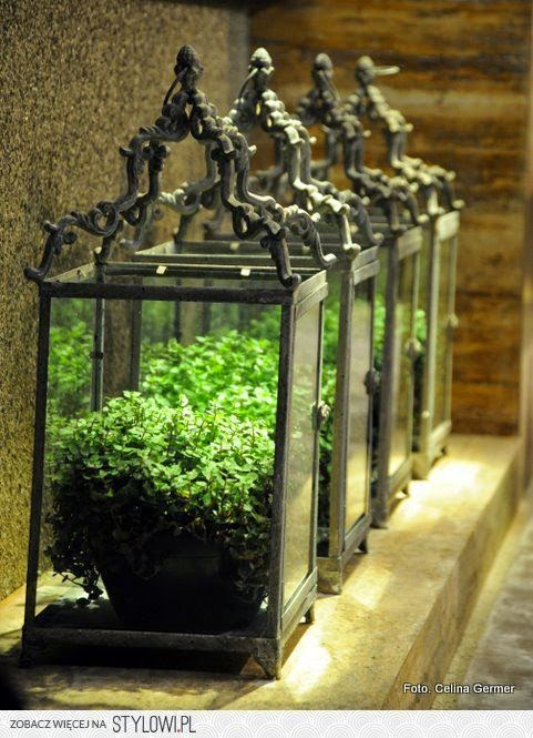 glass lanterns, ferns, centrepiece, dining table