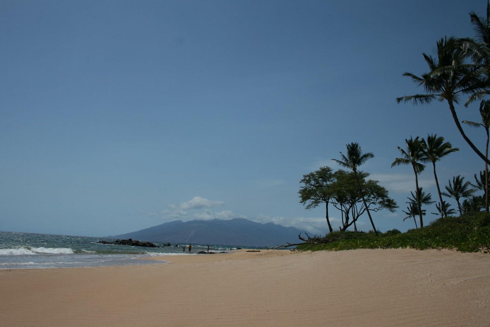 Auf zur nächsten Traumreise....: 26.4. - Ein Freitag in Kihei, Maui...