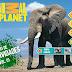 Animal Planet y LivoBooks lanzan su más reciente aplicación educativa para iPad