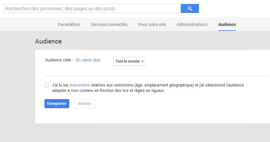 Page Audience sur Pages Google Plus
