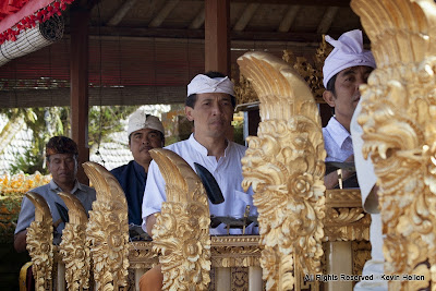 A Gamelan(musical ensemble) plays during the Galungan festival , Bali