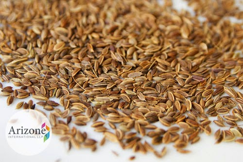 Dill Seed Arizone International LLP Vapi