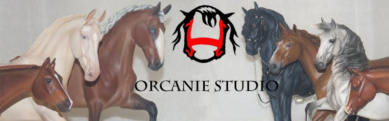 Orcanie Studio